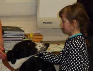 dogs trust 011