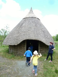 millstreet country park may14 110