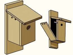birds house 3