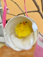 egg chick in the egg